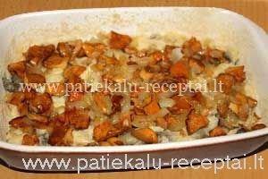 bulviu grybu apkepas 4