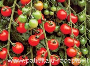 pomidorai 1